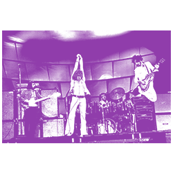 Band Picture C - Purple